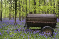 Old farm machinery in vibrant bluebell spring forest landscape flowers Stock Image