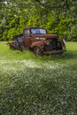 Old farm truck a rotting rusty wreck of a vintage parked under a crab apple tree in a meadow room for copy space at the bottom Stock Photo