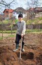 Old farmer digging in the garden Royalty Free Stock Photo