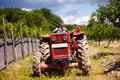Old farmer driving his tractor senior with trailer through a plum trees orchard Royalty Free Stock Image