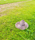 Old farmer s hat on grass field image of Stock Photography