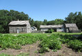 Old farmstead a potato garden with an in the background Royalty Free Stock Image