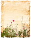 Old-fashioned flower Royalty Free Stock Photo
