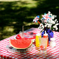 Old Fashioned Picnic Stock Photography