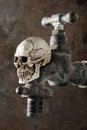 Old faucet wih skull Royalty Free Stock Photo
