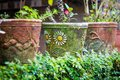 Old flower pots in the garden Royalty Free Stock Photo
