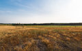 Old football pitch panoramic photo of in poland Royalty Free Stock Images