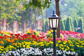 Old garden lamp in public park colorfull flower is backgroundsony dsc Royalty Free Stock Photo