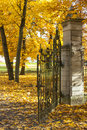 Old gate in autumn forest metal colorful Stock Photography