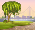 An old giant tree across the high buildings illustration of Royalty Free Stock Images