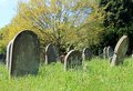 Old graves in cemetery scenic view of Royalty Free Stock Images