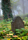 Old Gravestone Royalty Free Stock Image