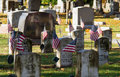 Old gravestones and flags veterans from early wars are still remembered as american are placed by them on memorial day Royalty Free Stock Images