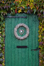 Old green barndoor surrounded by ivy Royalty Free Stock Photography