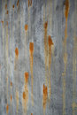Old green brown surface and concrete wall with rusted spots Royalty Free Stock Photo