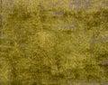 Old green plush Royalty Free Stock Photo