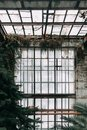 Old greenhouse, in European style