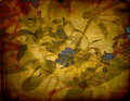 Old grunge background with floral ornament Royalty Free Stock Photo