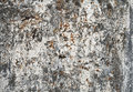 Old grunge painted metal surface Royalty Free Stock Images