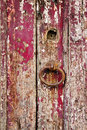 Old grungy wooden door with peeling paint and door handle rough Stock Photography