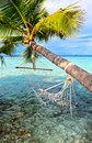 Old hammock attached to a palm tree on a beach in the indian ocean maldives Stock Images