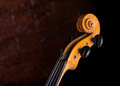 Old hand crafted violin neck musical background Royalty Free Stock Image