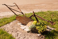 Old hand plough ancient farm implement a displayed with flowers Stock Photography