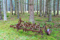 Old harrow in woods standing the Royalty Free Stock Images