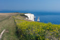 Old Harry Rocks and Wildflowers Stock Images
