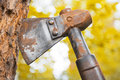 Old hatchet blade in wood stem Stock Photography