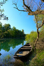 Old holey boat view of on the river in national park skadar lake montenegro Stock Photography