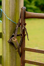 Old horse bridle on gatepost rusting metal and decaying straps Stock Images