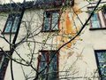 Old house on the background of houses with wooden frames branches of a blossoming tree Royalty Free Stock Photos