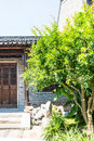 Old house and green tree this photo was taken in laomendong scenic spot nanjing city jiangsu province china Stock Image
