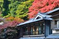 Old house in japan autumn red mapels Stock Photography