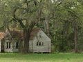 Old house under oak trees spanish moss hanging abandoned farm lawn green grass huge large neglect neglected spooky ghost Stock Photos