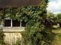 old house window green bush summer village pathway Royalty Free Stock Photo
