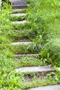 Old steps at a forest Royalty Free Stock Photo