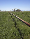 Old Irrigation Line Stock Image