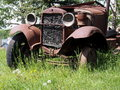 Old jalopy rusting away in tall grass deep beneath a poplar tree Royalty Free Stock Photography