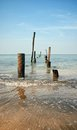 Old jetty pillars in sea Royalty Free Stock Photos