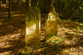 Old jewish cemetery kazimierz dolny poland Royalty Free Stock Images