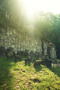 Old jewish cemetery kazimierz dolny poland Royalty Free Stock Photo