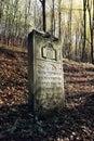 Old jewish cemetery kazimierz dolny poland Stock Photography