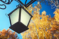 Old lantern on the background of the autumn forest metal Stock Images