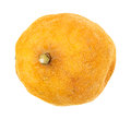Old lemon a that has started to shrivel and rot on a white background Royalty Free Stock Photo