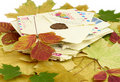 Old letters and autumn leaf Royalty Free Stock Images