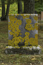 Old lichen covered tombstone in the fall Royalty Free Stock Image