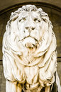 Old lion statue Stock Image