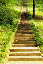 Old long stone mossy staircase in green forest Royalty Free Stock Photo
